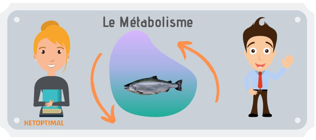 calculer son métabolisme de base