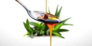 régime cétogène, alimentation cétogène, par quoi remplacer le sucre régime cétogène, sirop d'agave pour remplacer le sucre