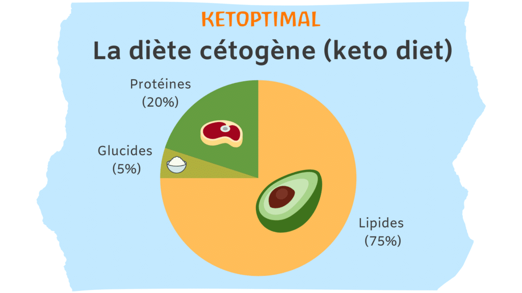 keto diet, régime keto, régime cétogène, diète keto, diète cétogène, alimentation keto, alimentation cétogène, ketoptimal