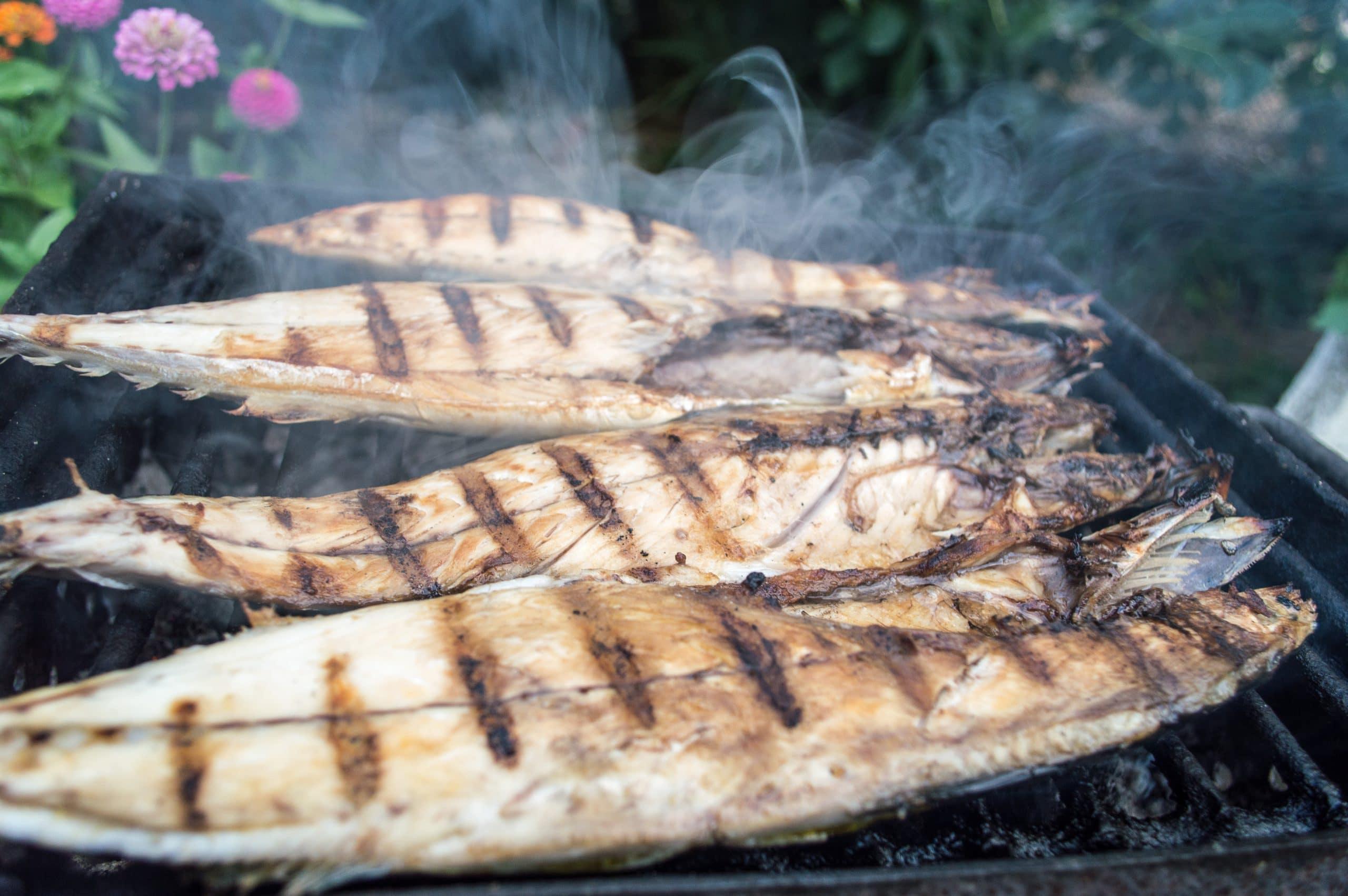 Le poisson et la diète cétogène